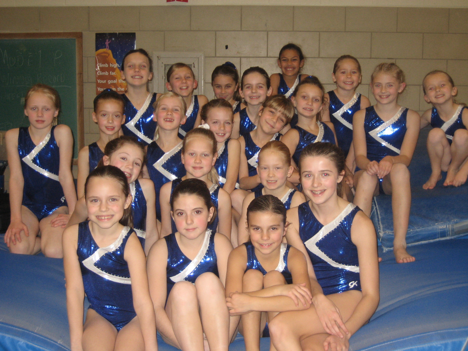 Girls+gymnastics+team